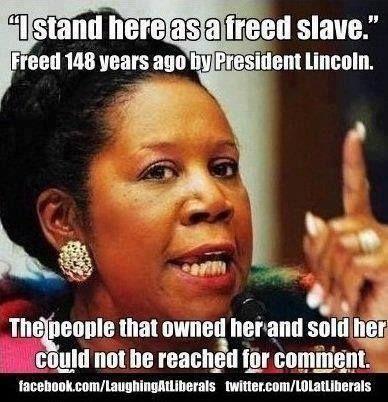 70ec793518e6802c1e8c2b9e38d432d2--stupid-liberals-racist.jpg