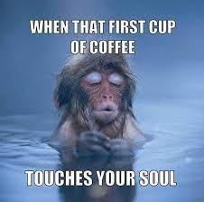 coffee3.jpeg