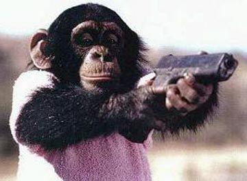 Danger_Chimps.jpg
