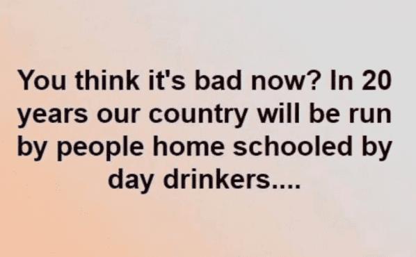 homeschooledbydaydrinkers.png