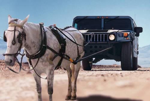 horsehummer.jpg
