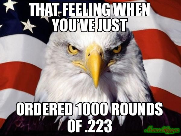 That-feeling-when-youve-just-Ordered-1000-rounds-of-223.jpg